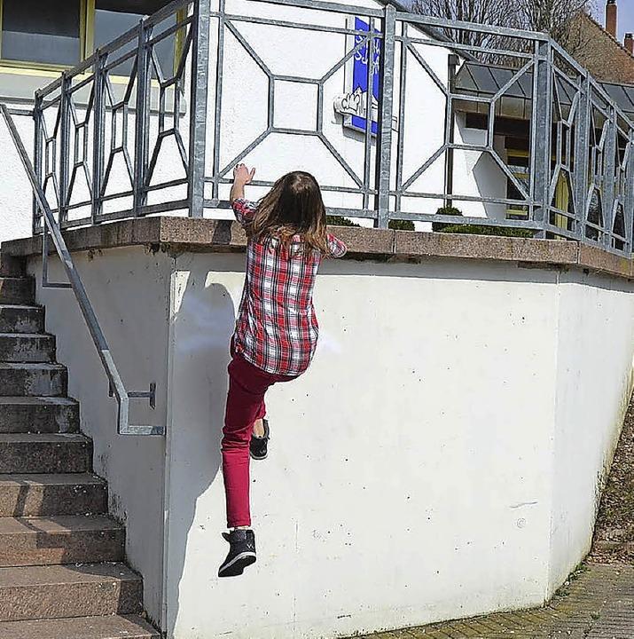 Sie geht die Wand hoch <ppp></ppp>    Foto: Privat