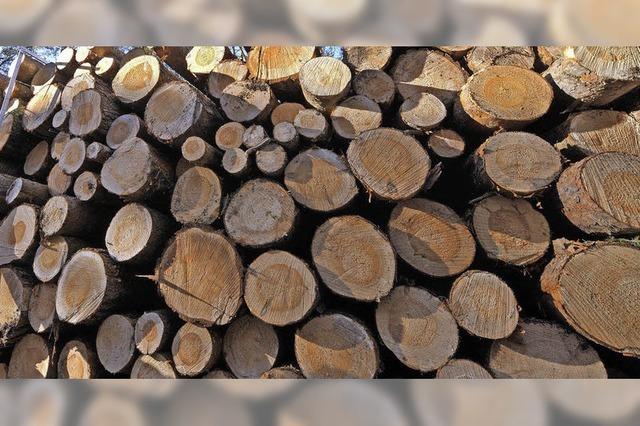 Kreis plant Privatwald-Tagung
