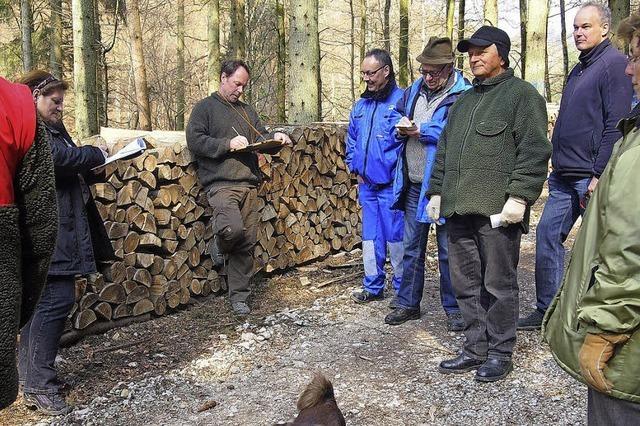 Ersprießliche Holzversteigerung
