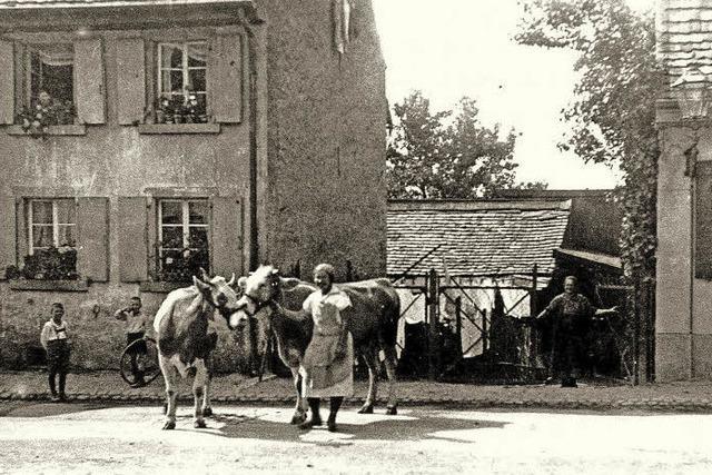 Stadtgeschichte: Herdern war einst ein Bauerndorf