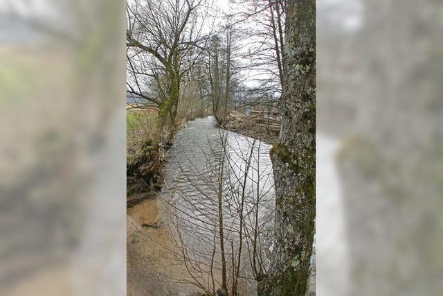 Langenau und Enkenstein sollen vor Hochwasser geschützt werden