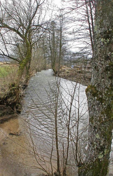 Die Idylle trügt: Die Kleine Wiese bei Langenau ist nicht immer so zahm.    Foto: André Hönig