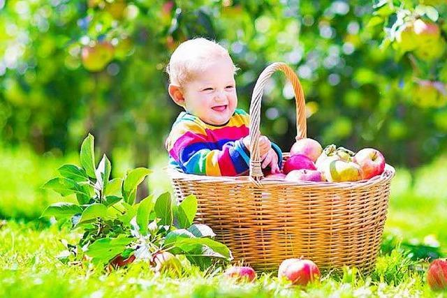 Warum die Stadt Freiburg jedem Baby einen Apfelbaum schenken will