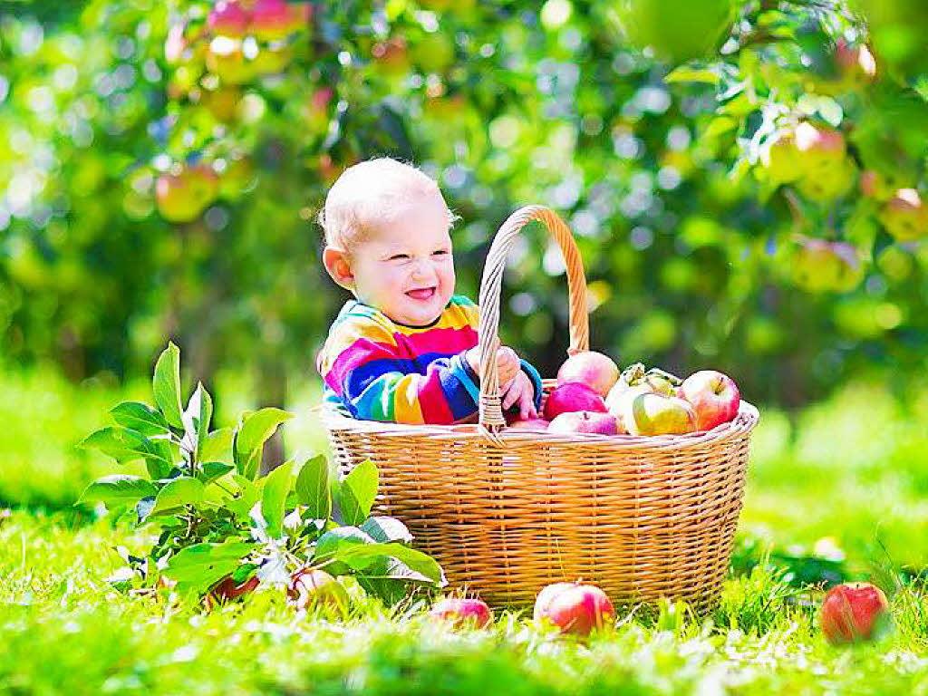 freiburg babyboom und klimarettung warum die stadt freiburg jedem baby einen apfelbaum. Black Bedroom Furniture Sets. Home Design Ideas