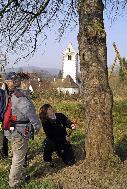 Kursleiterin Roswitha Rombach zeigt, w...dem Kratz die raue Baumrinde glättet.   | Foto: sil