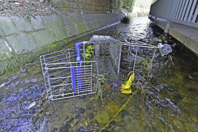 Im Kronenmühlenbach liegt regelmäßig Müll