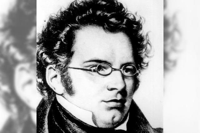 Schubert-Lieder im Wohnstift Freiburg