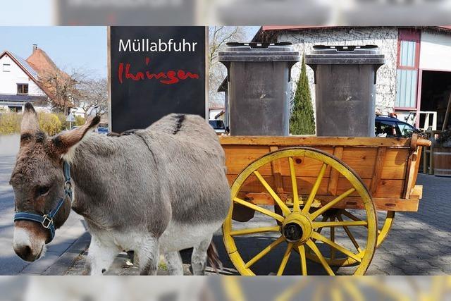 Bald holen Esel den Müll ab