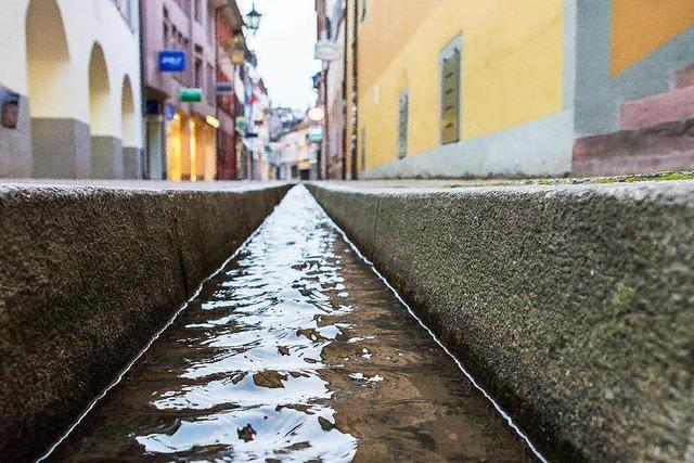 Freiburg muss wohl die Bächle zuschütten – wegen der Radler