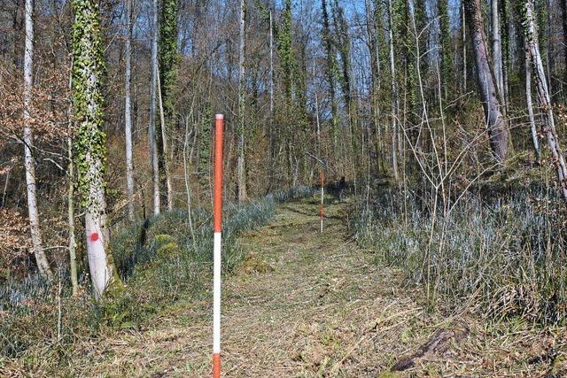 Neuer Weg entlang des Ruschbachs