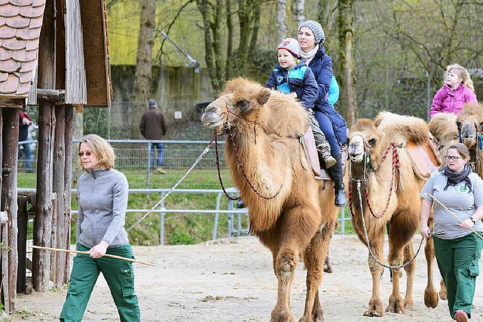 Kinder und Tiere … eine super Kombination (Foto: Rita Eggstein)