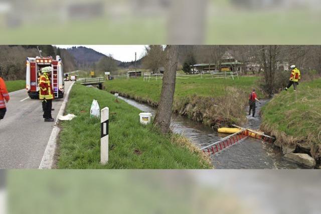 Öl in Kirnbach und Bleiche