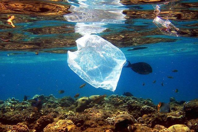 Plastiksuppe Weltmeere: Wieso auch Textilien schuld sind