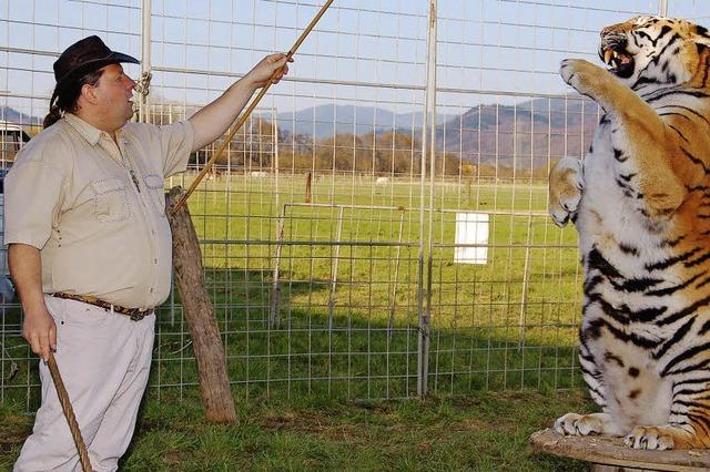 Zirkus Weisheit: Tiger Sahib ist der heimliche Star