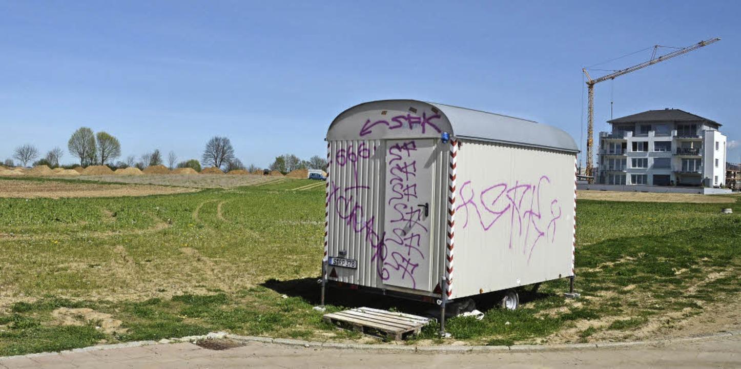 Bezahlbarer Wohnraum rückt näher - Bad Krozingen - Badische Zeitung