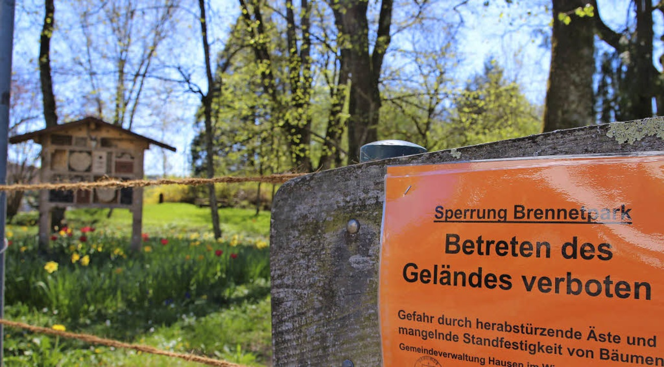Einige  Bäume im Brennet-Park stellen ...ks ist die Brennet/MBB Immobilien AG.   | Foto: Bertsch
