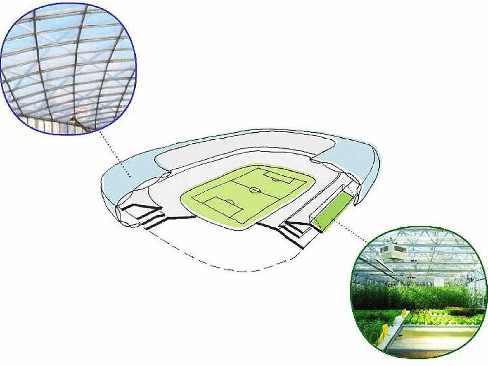 So könnte die Fußballfarm funktioniere...rigenergie-Gewächshaus genutzt werden.  | Foto: Fußballfarm