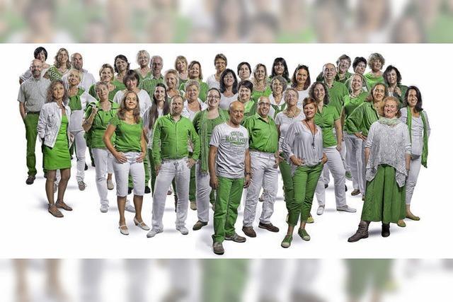 Pop-Vox und Freistil in der Steinhalle in Emmendingen