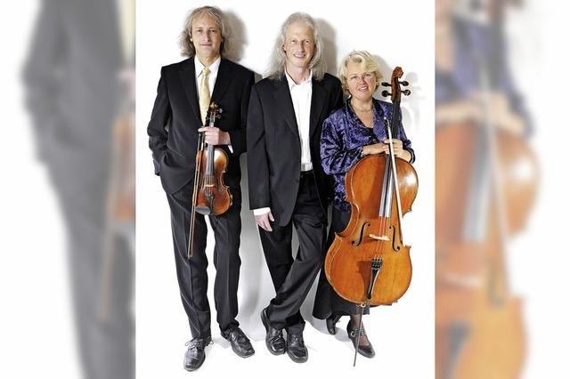 Das Orpheus-Trio gastiert in der Lörracher Galerie Ars Nova