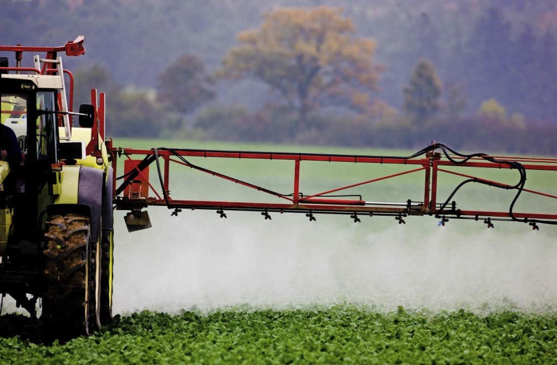 Erst aufs Feld, dann in den Bach: Pflanzenschutzmittel  | Foto: dpa