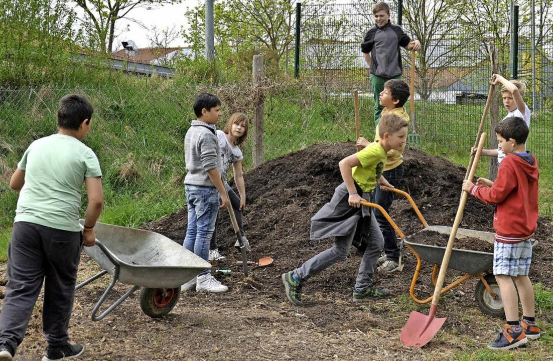 Die Schülerinnen und Schüler der Klass...ulgarten  das Gemüse düngen zu können.  | Foto: Daniel Kulessa