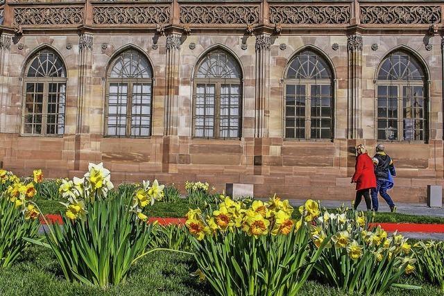 Vom Liegestuhl aus den Münsterblick genießen