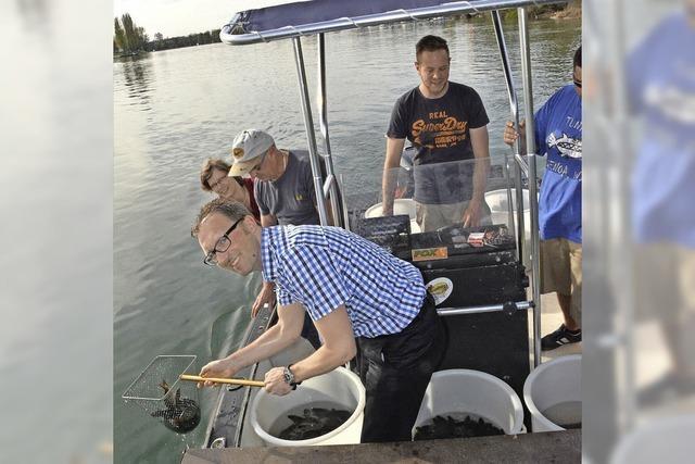 Mehr als 1000 Fische im Rhein ausgesetzt
