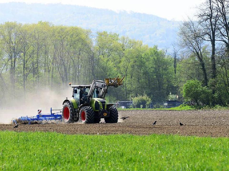 Wo heute noch Äcker gepflügt werden, soll der neue Stadtteil Dietenbach stehen.   | Foto: Ingo Schneider