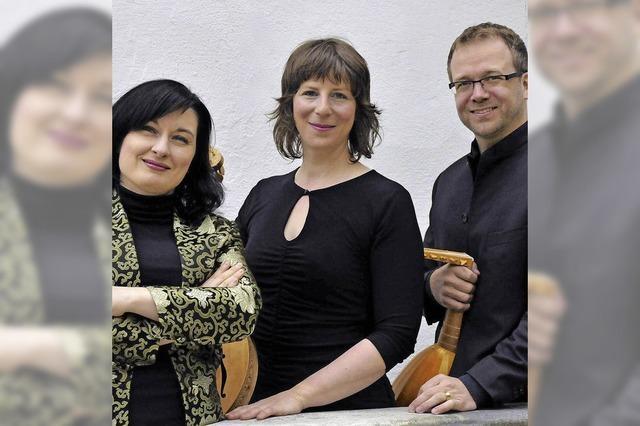Das Ensemble Dragma spielt im Freiburger Haus