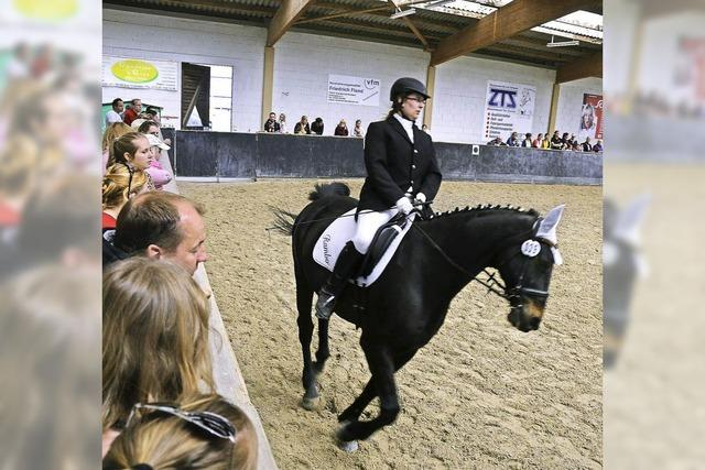 Reiternachwuchs im Wettbewerb