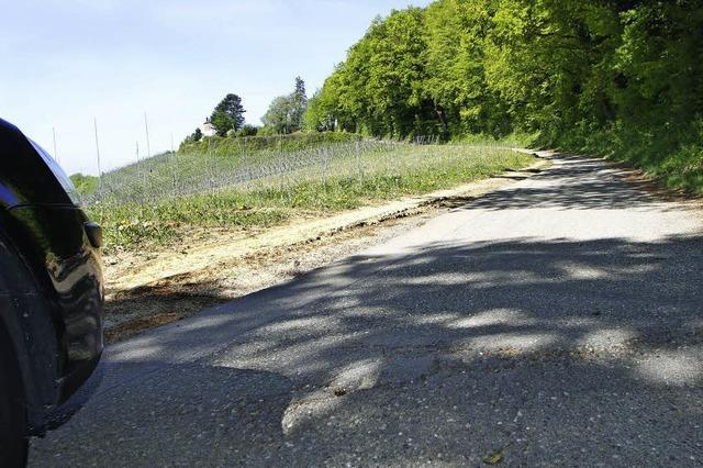 Ramponierte Feldwege in Kippenheim werden saniert