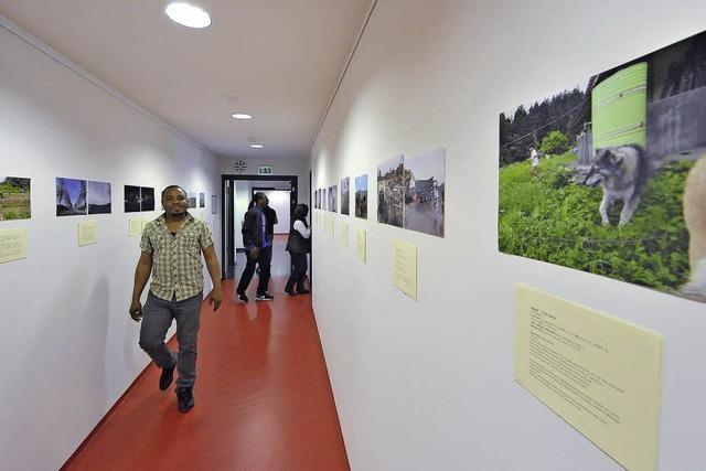 Bilder aus Fukushima in Freiburg