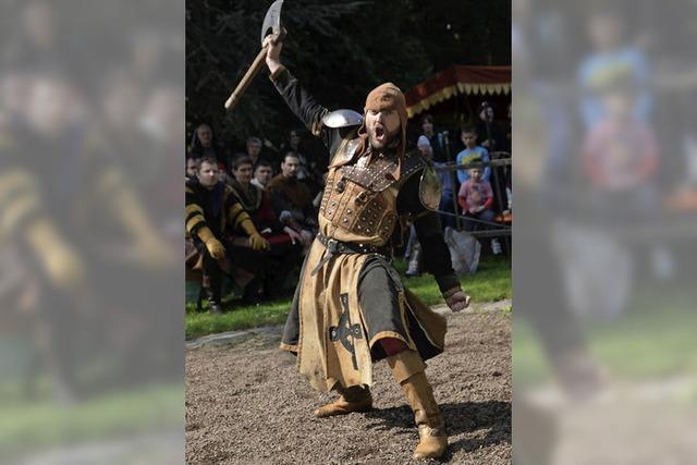 Ritter bevölkern den Schlosspark