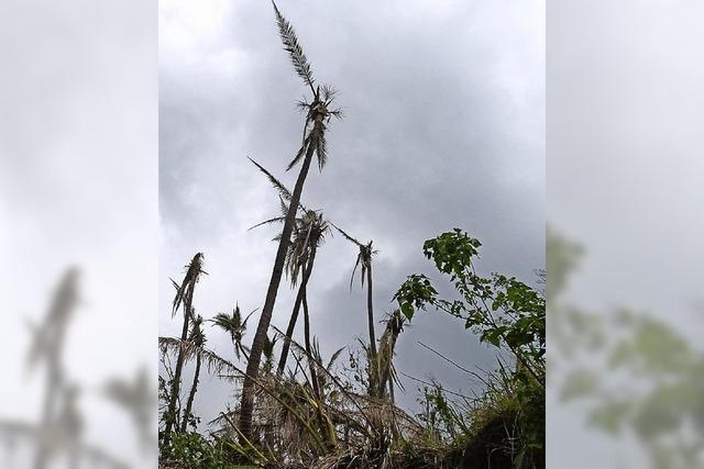 Freiburger kartiert zerstörtes Südseeparadies mit der Drohne