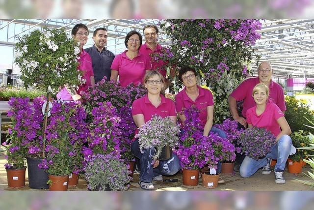 Blühendes für Garten und Balkon