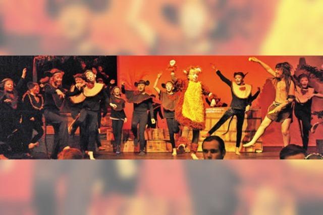 Eine Spielwiese für Tanz und Gesang