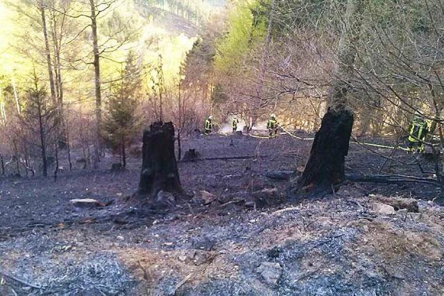 Einsatz unter schwierigen Bedingungen: Großflächiger Waldbrand in Elzach-Yach