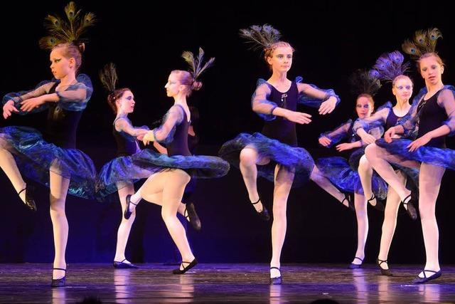 Ein Kaleidoskop bunter Tänze