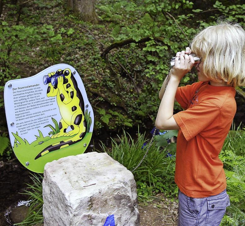 Der Sulzbachpfad soll mit Information ...indern das Thema Wasser näherbringen.   | Foto: Stadt Lahr