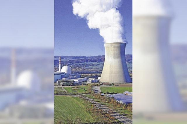 Atommeiler spucken weniger Strom aus