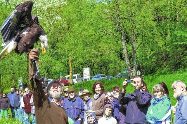 Römerbadsaison startet am 1. Mai