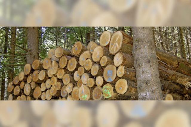Kein Staat mehr beim Holzverkauf