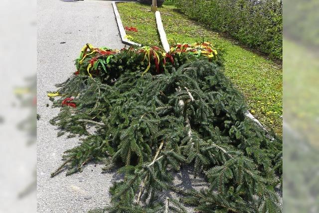 Umgesägte Maibäume und ausgelaufene Molke