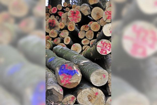 Dienstleistungen der Forstverwaltung auf Prüfstand