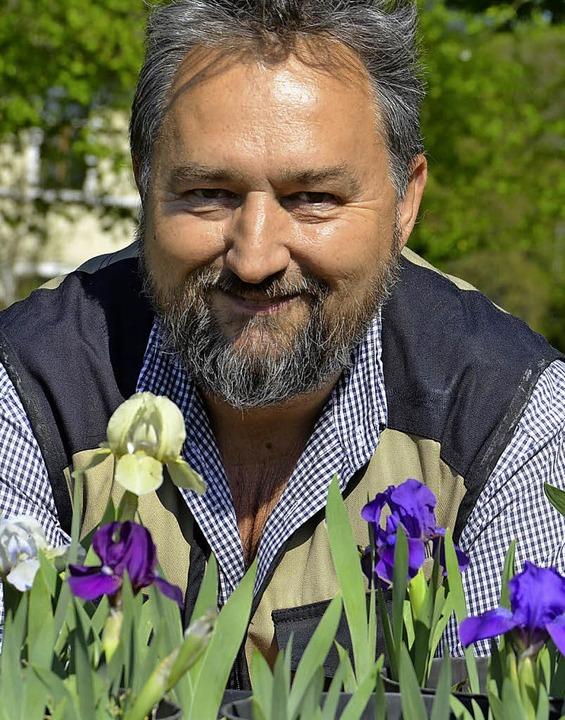 Irisgarten Fritz Lehmann  | Foto: Verena Pichler