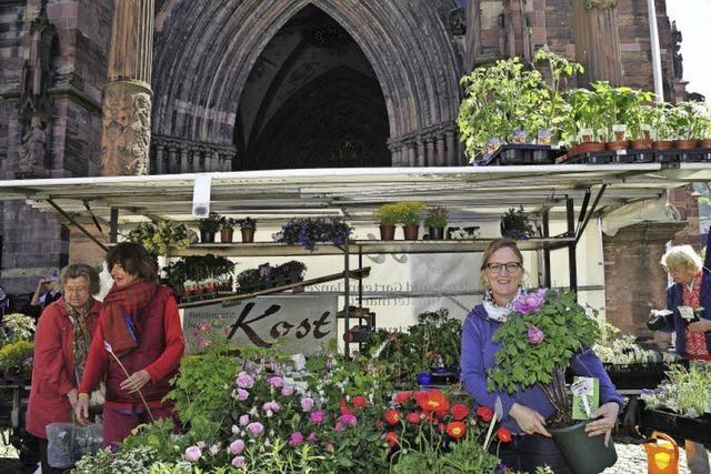 Gärtnerfamilie Kost - seit 135 Jahren auf dem Münstermarkt präsent