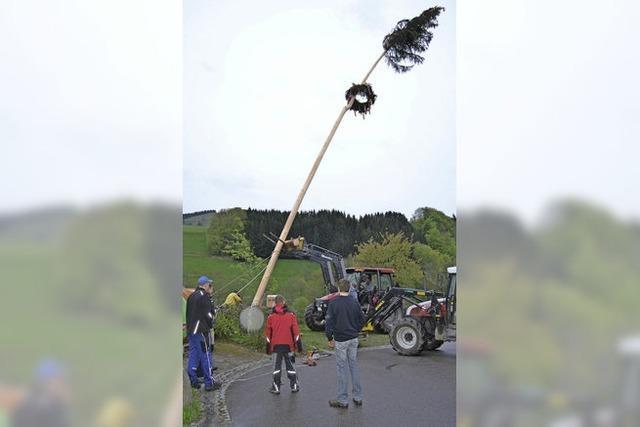 Maibaum-Frevel in Fröhnd und Riedichen