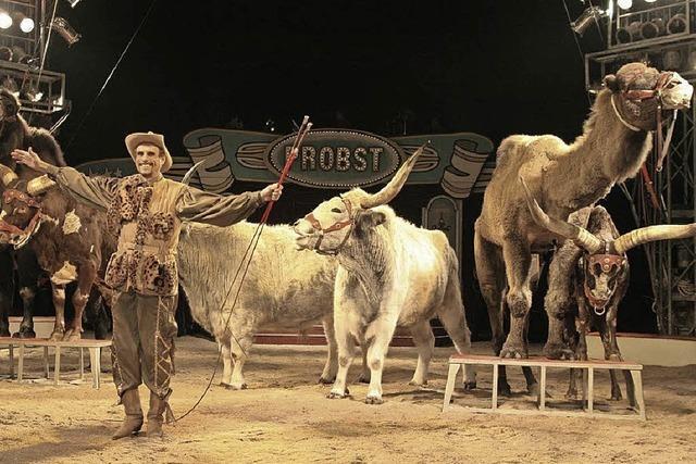 Freikarten für den Circus Probst auf dem Messeplatz Offenburg