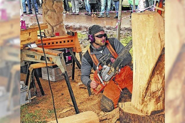 Holzkunstwerke durch Motorkraft
