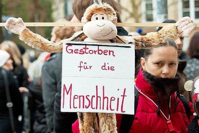 Gesinnungsterror wirkt: Stopp der Affenversuche in Tübingen